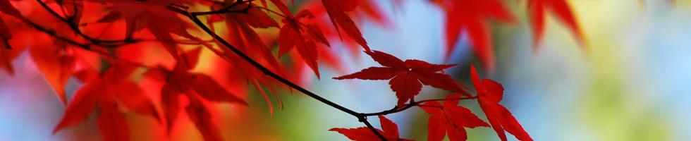 Podzimní prázdniny v Beskydech