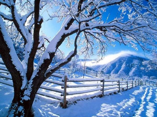Snow opening - akce 2 za cenu 1
